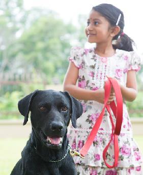 Girl Walking Dog SMALL