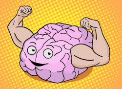 Smart Brain Muscle SMALL
