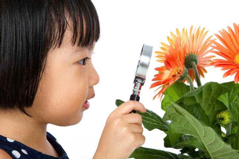 Asian Girl Flower