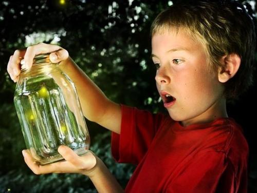 Boy with fireflies 900