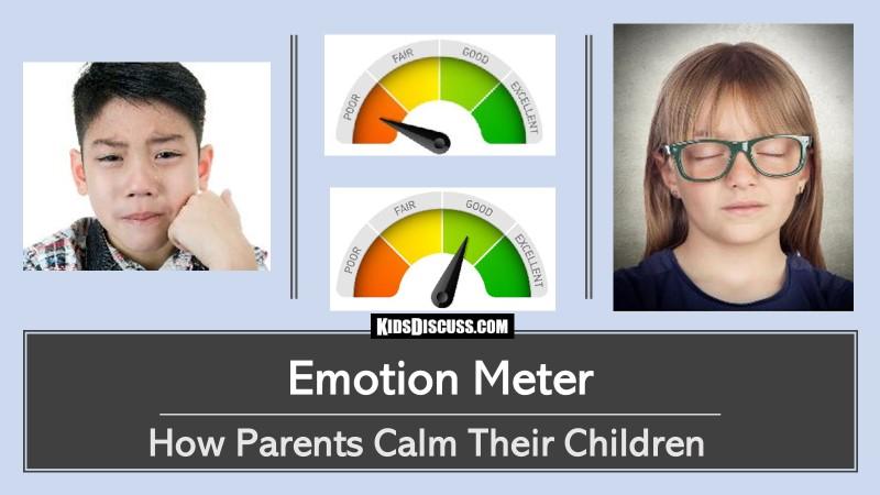 Emotion Meter 800